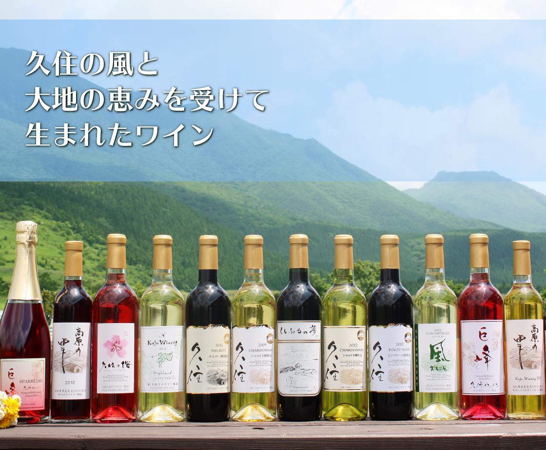 畑から愛情込めて葡萄をつくりたくさんのおいしいワインがうまれました。
